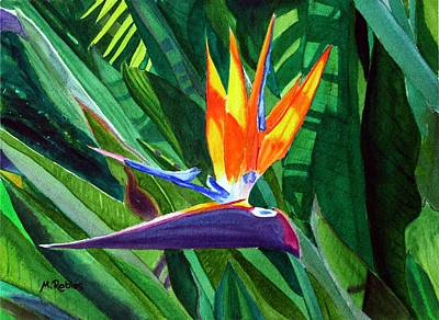Bird-of-paradise Art Print