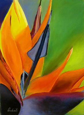 Painting - Bird Of Paradise by Prashant Shah