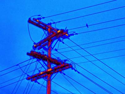 Telephone Poles Digital Art - Bird On A Wire by Randall Weidner
