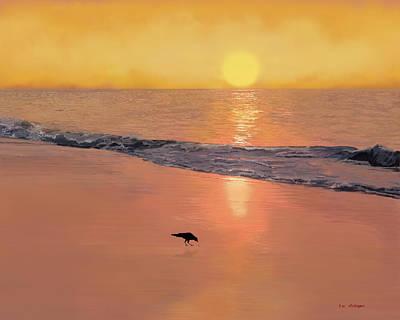 Bird On The Beach Art Print by Tim Stringer
