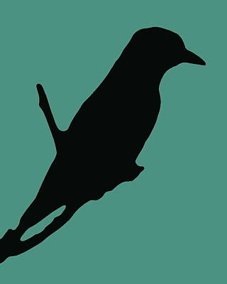 Photograph - Bird Silhouette Teal Black by Ramona Johnston