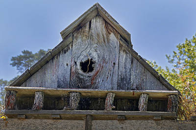 Photograph - Birdhouse In Cambria by Mick Anderson