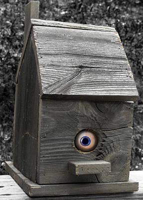 Birds Eye View Print by Kristie  Bonnewell