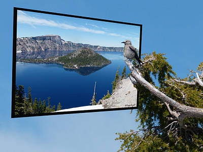 Photograph - Birds Eye View Of Crater Lake by Cindy Wright