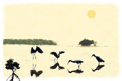 birds feeding in the Everglades Art Print