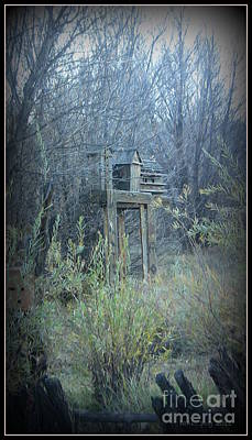 Photograph - Bird's Haven In The Fall by Lani PVG   Richmond