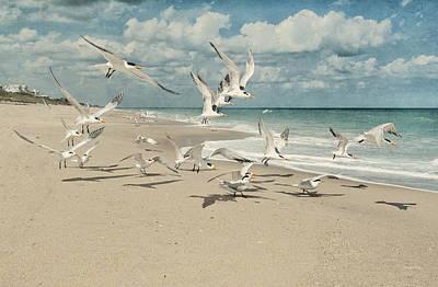 Birds In Flight Art Print by Cheryl Davis