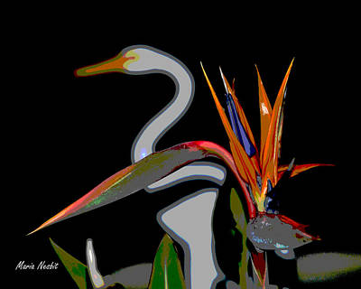 Birds In My Paradise... Art Print