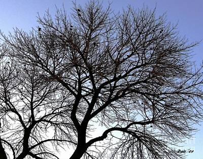Digital Art - Birds In Tree by Dale   Ford