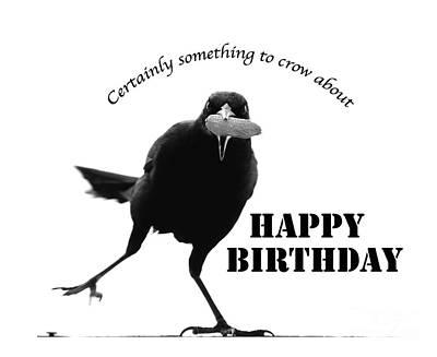 Photograph - Birthday Bird by Nancy Greenland