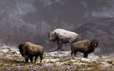 Bison King Art Print by Daniel Eskridge