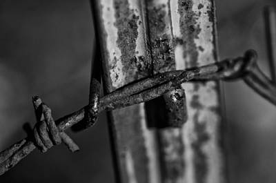 Photograph - Black And White Barbed Wire by Wilma  Birdwell