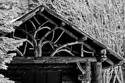 Owls - Black And White Cabin by Mitch Shindelbower