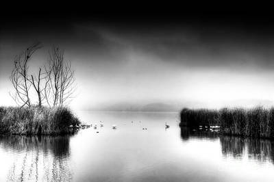 Black And White Day Art Print by Soultana Koleska