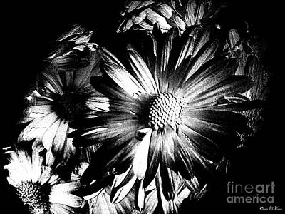 Photograph - Black And White by Donna Brown