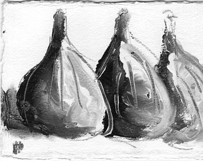 Black And White Fig Study Art Print by Suzanne Jenne