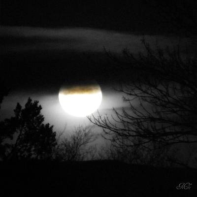 Art Print featuring the photograph Black And White Full Moon by Michelle Frizzell-Thompson