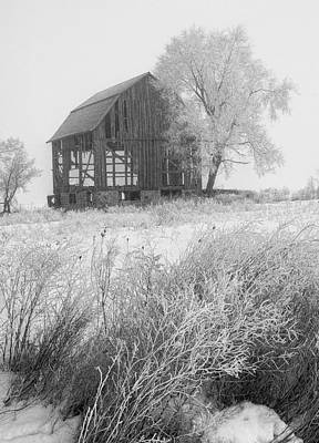 Randall Nyhof Royalty Free Images - Black and white photo of an old dilapitated barn in an early morning hoar frost Royalty-Free Image by Randall Nyhof