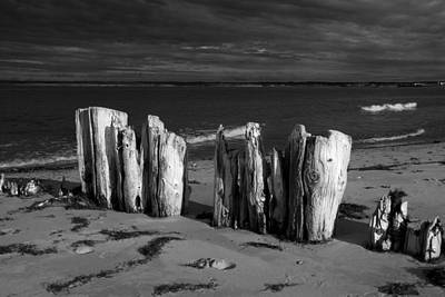 Photograph - Black And White Photograph Of Shore Pilings On Prince Edward Island by Randall Nyhof