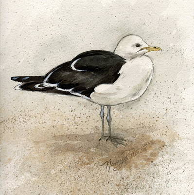 Painting - Black Backed Gull  by Nancy Patterson