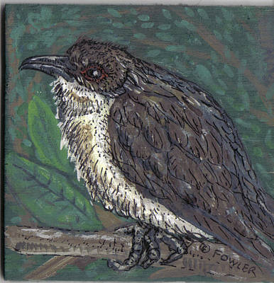 Cuckoo Mixed Media - Black-billed Cuckoo In Thoughtful Repose by John A Fowler