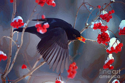 Black Bird In Flight Art Print