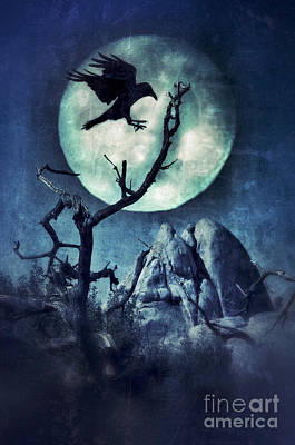 Moonlit Night Photograph - Black Bird Landing On A Branch In The Moonlight by Jill Battaglia