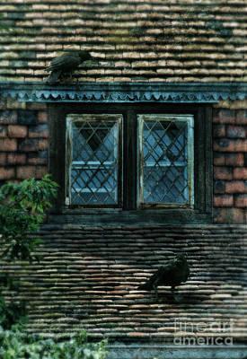 Black Birds Sitting On Roof By Window Art Print by Jill Battaglia