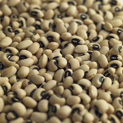 Black Eyed Peas Photograph - Black Eyed Beans, Natural Food Ingredient by Malcolm Park