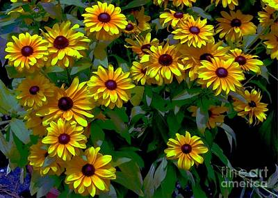 Digital Art - Black-eyed Susans by Dale   Ford