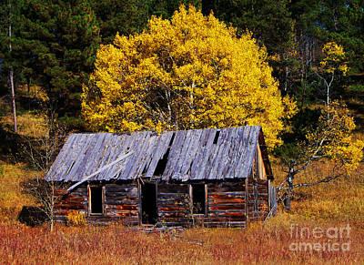 Homestead Digital Art - Black Hills Homestead Cabin by Terril Heilman