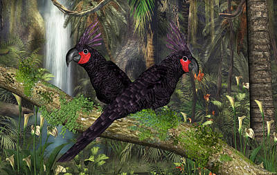 Digital Art - Black Palm Cockatoo by Walter Colvin