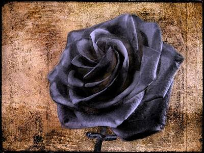 Black Rose Eternal   Art Print