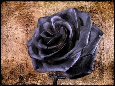 Black Rose Eternal   Print by David Dehner