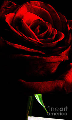 Photograph - Black Shadows On Red Rose by EGiclee Digital Prints