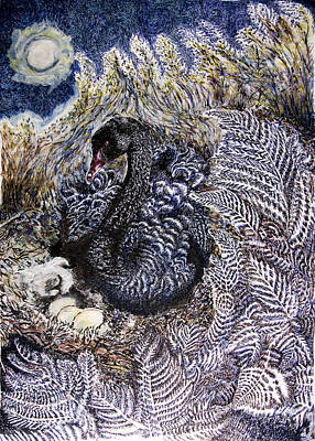 Wetlands Drawing - Black Swan Mother And Child by Helen Duley