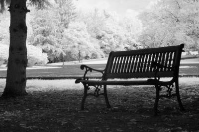Charleston Black And White Infrared Charleston Battery Park Bench Print by Kathy Fornal