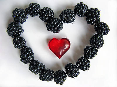 Photograph - Blackberry Love by Ausra Huntington nee Paulauskaite