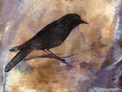 Corvid Photograph - Blackbird by Carol Leigh