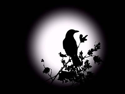 Blackbird In Silhouette  Art Print by David Dehner