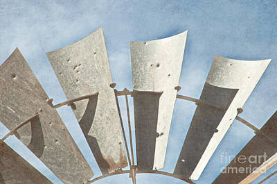 Blades - Texture Art Print by Bob and Nancy Kendrick