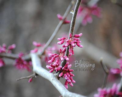 Photograph - Blessing by Jai Johnson