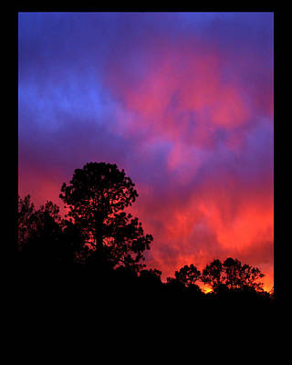 Art Print featuring the photograph Blessings From The Sun by Susanne Still