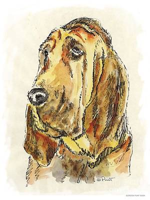 Painting - Bloodhound-watercolor by Gordon Punt