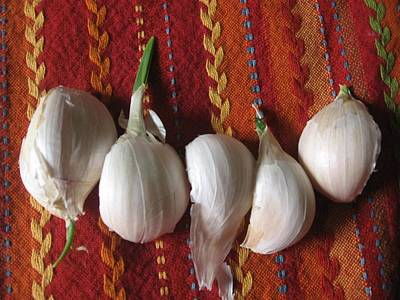 Photograph - Blooming Garlic Bulbs by Deb Martin-Webster