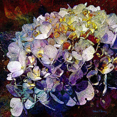 Digital Art - Blossoms by Barbara Berney
