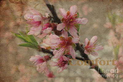 Art Print featuring the photograph Blossoms by Tamera James