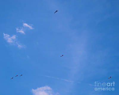 Photograph - Blue Angels 30 by Mark Dodd