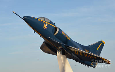 Photograph - Blue Angels by Donna Brown