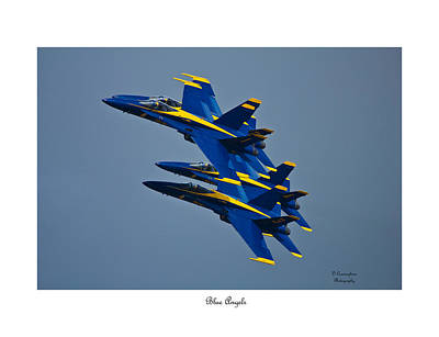 Photograph - Blue Angels by Dorothy Cunningham
